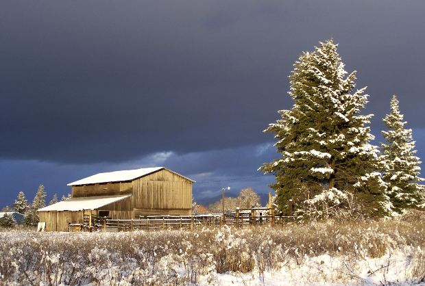 winter barn original.jpg